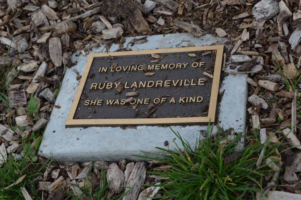 A plaque for a memorial tree