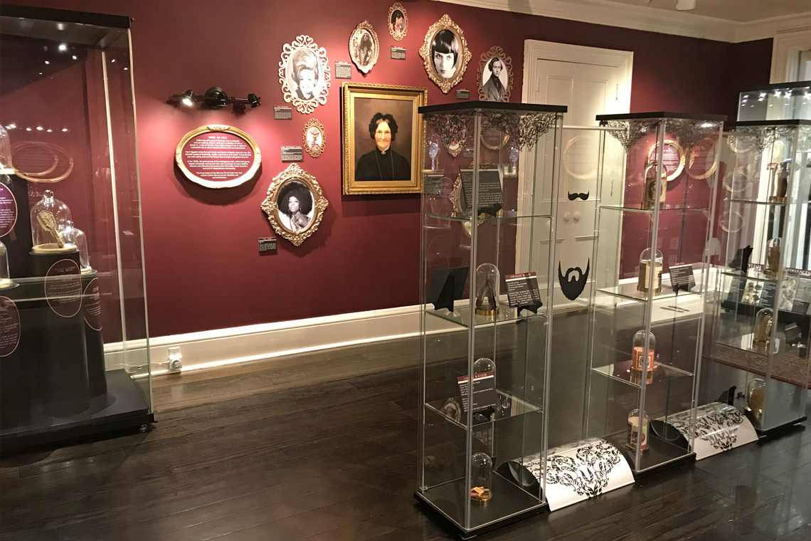 Hair exhibit image