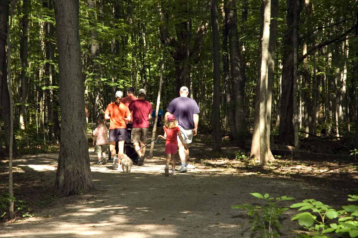 Active families on a trail